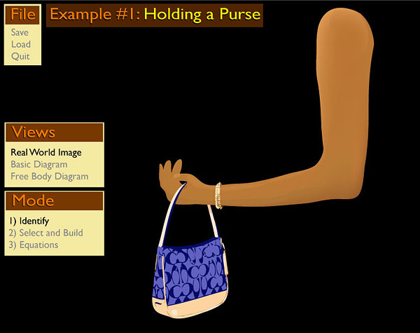 The Purse Problem: Real World Image
